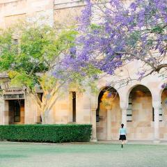 UQ Great Court, jacarandas; Image courtesy of University image bank