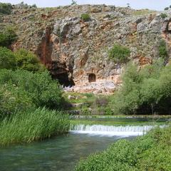 Spring of Banias River, Pan's Cave; Image by gugganij (own photography - eigenes Foto) GFDL, CC-BY-SA-3.0 or CC BY-SA 2.5-2.0-1.0, via Wikimedia Commons