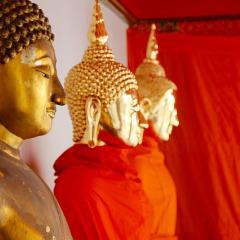 golden Buddha statues, Thailand; Image via Pixabay, CC0 Public Domain