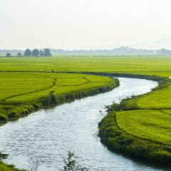 vietnam countryside, river; Image via Pixabay, CC0 Public Domain