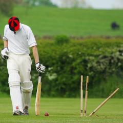 cricket batsman bowled out; Image via Pixabay, CC0 Public Domain