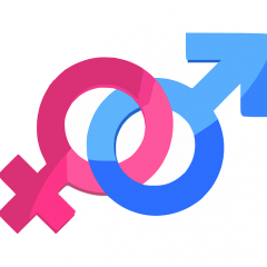 gender symbol; Image via Pixabay, CC0 Public Domain