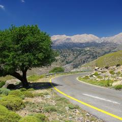 Greece, landscape, mountains, tree; Image via Pixabay, CC0 Public Domain